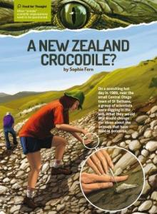 A new zealand crocodile cover.