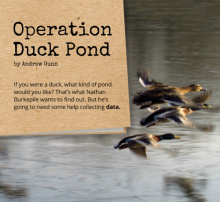 Operation Duck Pond