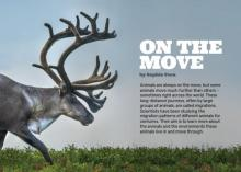 On the Move cover.
