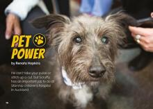 Pet power cover image.