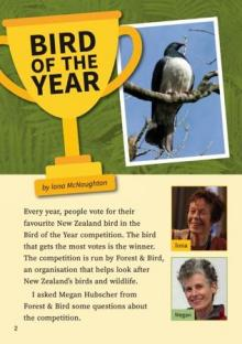 Bird of the Year cover