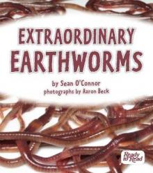 Extraordinary earthworms.