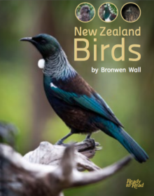 New zealand birds cover image.