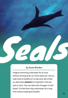 Seals cover image.