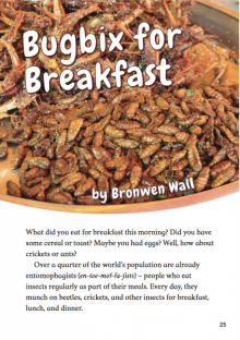 Bugbix for breakfast cover image.