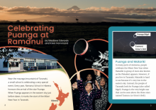 Celebrating puanga at ramanui cover image.